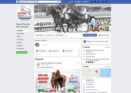 Facebook profil üzemeltetése
